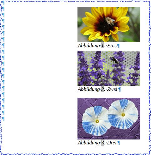 Writer - Abbildungsverzeichnis Bilder